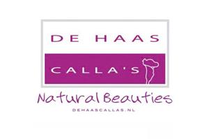 De Haas Calla's
