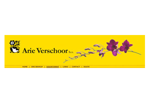 Arie Verschoor